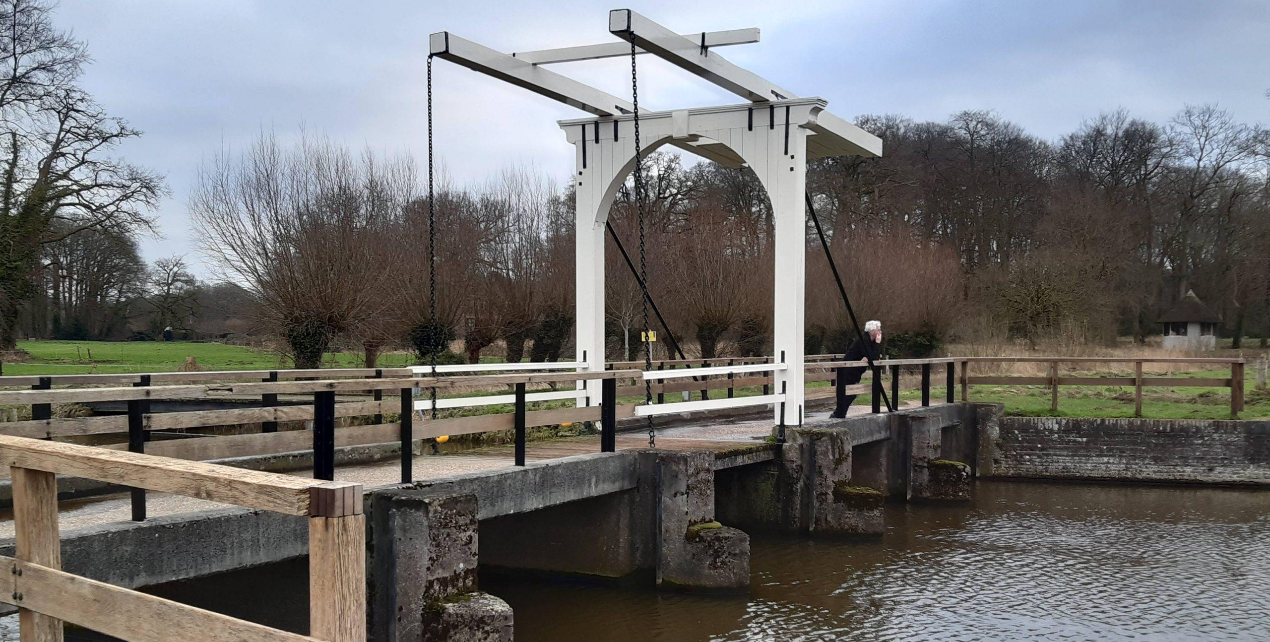 Rinnie's blog – De koppige boer en het bruggetje over het water